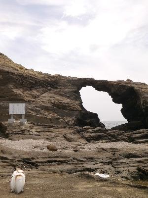 三浦半島11