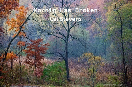Mornig Has Broken - Cat Stevens
