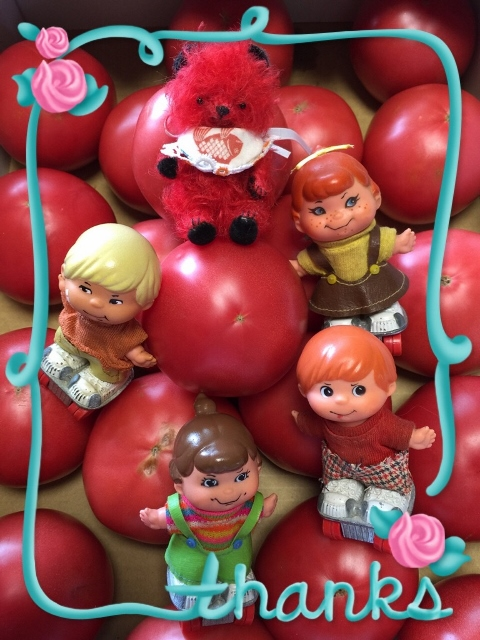 tomato2 (480x640)