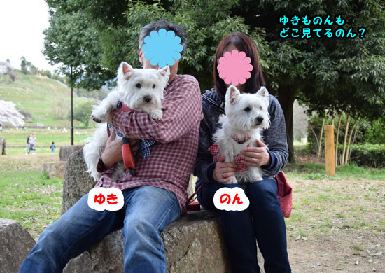 DSC_0154_20150403220545dad.jpg