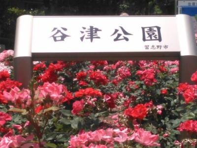 20150522谷津