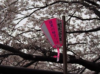 meguro-street42.jpg