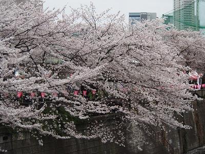 meguro-street49.jpg