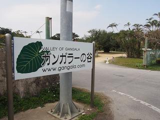 okinawa192.jpg