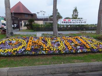 okinawa200.jpg