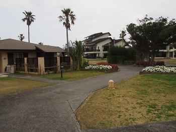 okinawa207.jpg