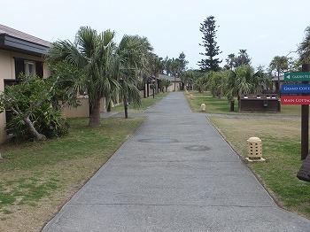 okinawa208.jpg