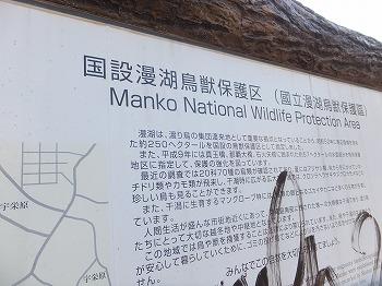okinawa254.jpg