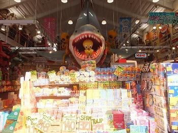 okinawa311.jpg