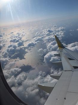okinawa401.jpg