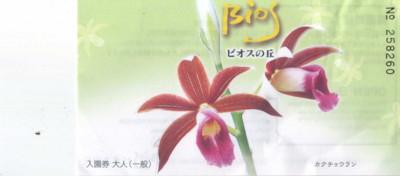 okinawa413.jpg
