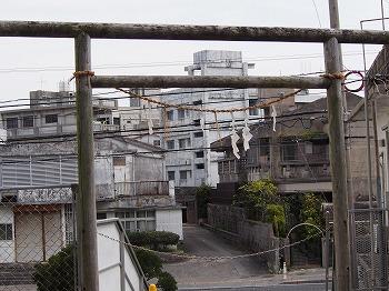 okinawa87.jpg