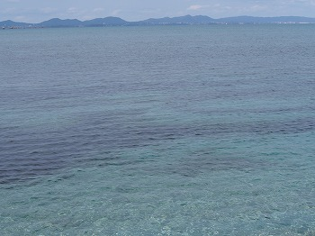 okinawa94.jpg