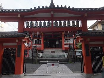 shinjuku-street179.jpg