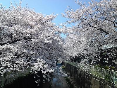 takaido-street11.jpg