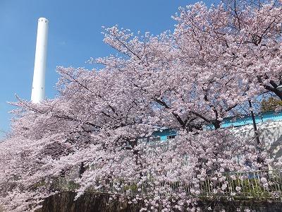 takaido-street13.jpg