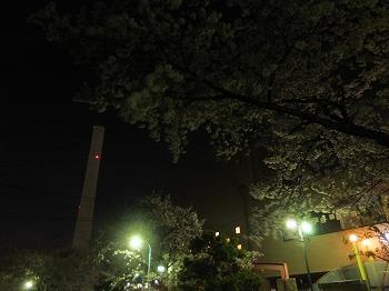 takaido-street16.jpg