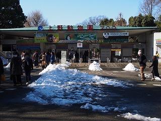 ueno-zoo158.jpg