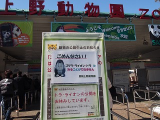 ueno-zoo159.jpg