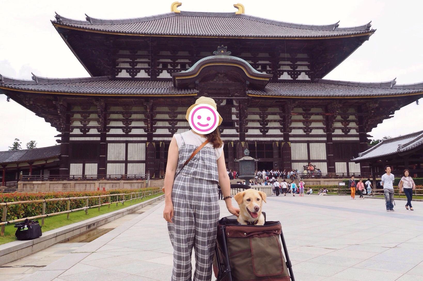 奈良の大仏 大型犬 大仏殿