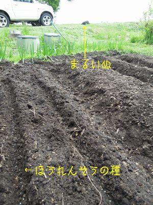 b20150608-DSCN0237.jpg