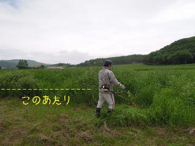 b20150628-DSCN0922.jpg