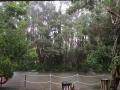 Easter 2015 5 アロマスクール マッサージスクール オーストラリア