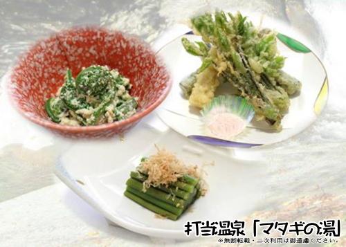 打当温泉 料理長おまかせ山菜食べ比べプラン