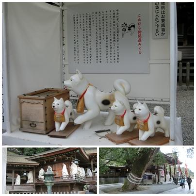 風景10(大祈願祭 おみくじ)