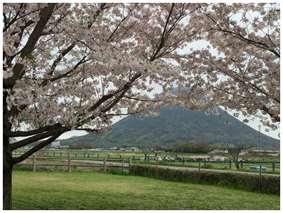 飯野山を見る風景1