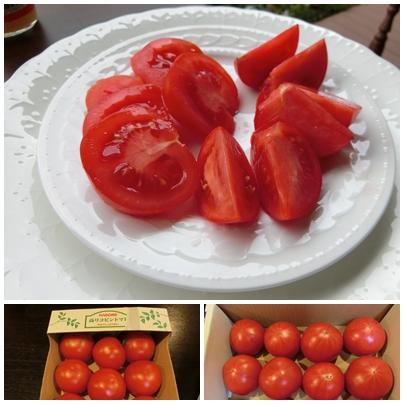シュガートマト3
