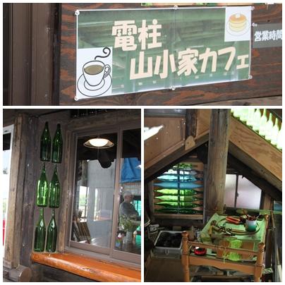 E芝桜富士9