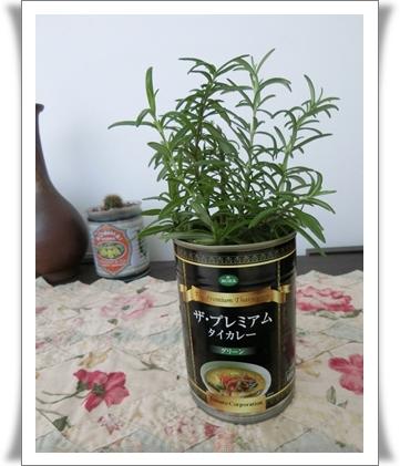 タイカレーの缶