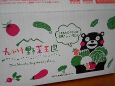 kyusyu1-2.jpg