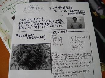 kyusyu5.jpg