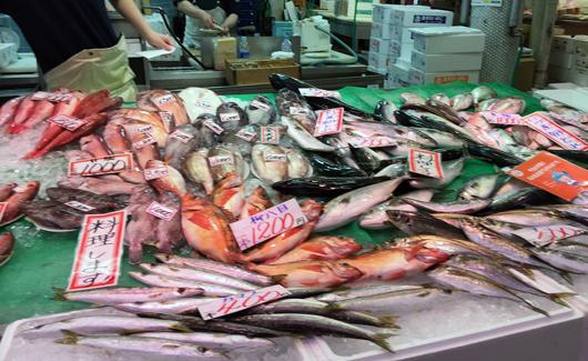 市場っぽい魚たち