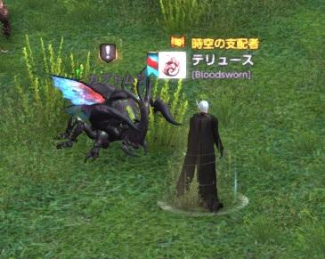 カブトムシ狩り