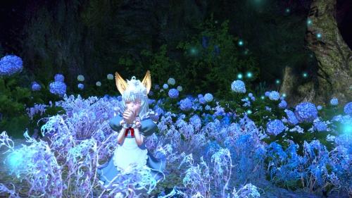 紫陽花の君