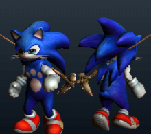 Sonic_Cat.png