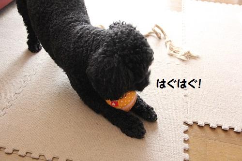 IMG_88002.jpg