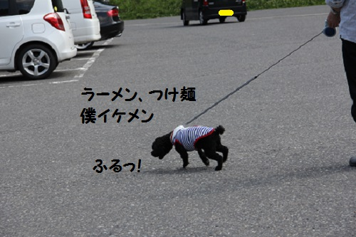 IMG_88512.jpg