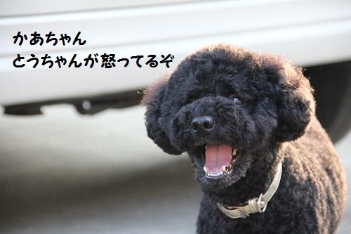 IMG_89662.jpg