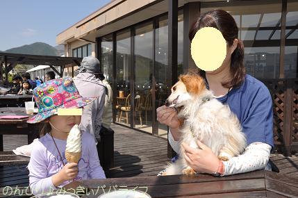 fujigoko201504008.jpg