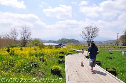 fujigoko201504011.jpg