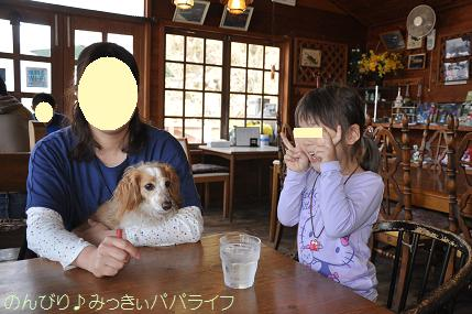 fujigoko201504017.jpg