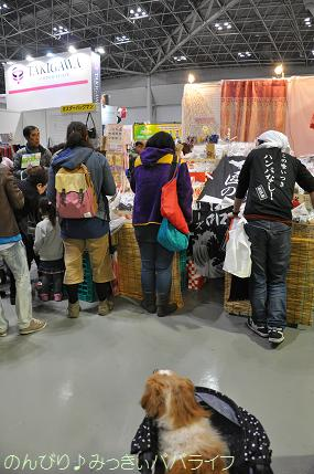 interpets201512.jpg