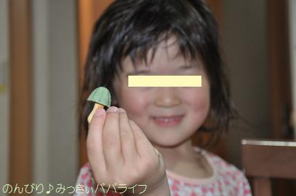 kinokonoyamasasadango2.jpg
