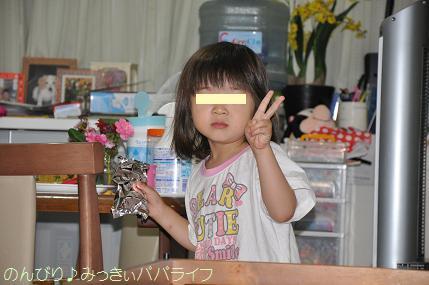 kinokonoyamasasadango4.jpg