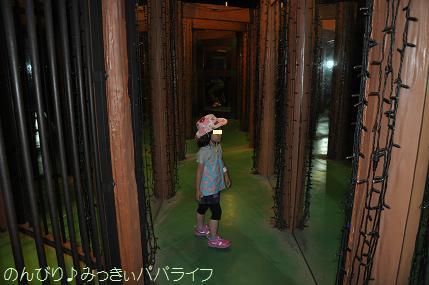 pleasureforest201538.jpg