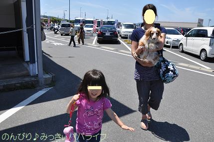 tateyama201505001.jpg